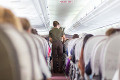 Steward on the airplane. Royalty Free Stock Images