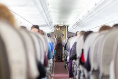 Steward on the airplane. Royalty Free Stock Image