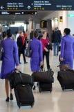 Steward (hôtesse de l'air) Photographie stock