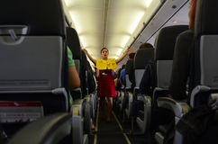 Steward (hôtesse de l'air) Image stock