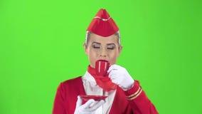 Stewardess in den Handschuhen trinkt Kaffee mit einem roten Becher Grüner Bildschirm Langsame Bewegung Abschluss oben stock video