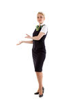 Stewardess invites the cabin Stock Image