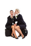 Stewardess with luggage bags Royalty Free Stock Photo