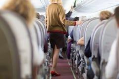 Stewardess på flygplanet Arkivfoto