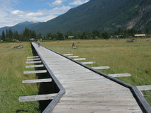 Stewart, British Columbia Estuary Boardwalk Stock Image