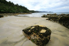 Stewart island beaches Royalty Free Stock Photo