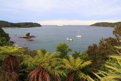 Stewart Island, Nueva Zelanda Bahía de herradura Fotos de archivo
