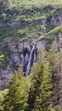 Stewart`s Falls Cascading Down the Mountainside. On the backside of Mount Timpanogos Stock Photos