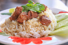 Stewed beef with rice. A Stewed beef with rice Royalty Free Stock Photography
