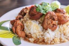 Stewed beef with rice. A Stewed beef with rice Stock Image