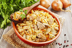 Stewed cabbage with meat Stock Images
