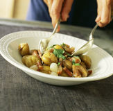 Stewed chestnuts with grelot onions. And diced bacon,Food, gastronomy, cuisine,cookery Stock Photos