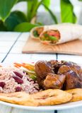 Stewed Chicken with Rice Royalty Free Stock Images