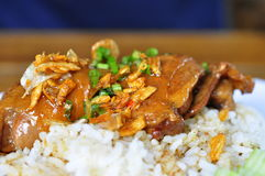 Stewed chicken and rice Royalty Free Stock Photo