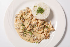 Stewed chicken with white rice and mashroom sauce Royalty Free Stock Photography