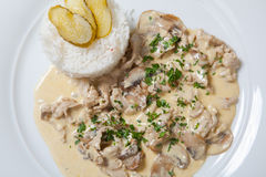 Stewed chicken with white rice and mashroom sauce Stock Images