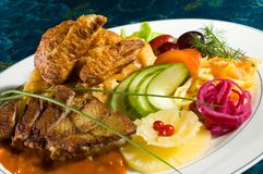 Stewed Duck Entree royalty free stock photos