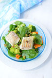 Stewed haddock and salad Stock Images