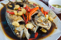 Stewed mackerel fish Royalty Free Stock Image