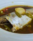 Stewed makreli ryba w słonej polewce, naczynia Tajlandia Obraz Royalty Free