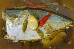Stewed makreli ryba w słonej polewce, naczynia Tajlandia Fotografia Royalty Free