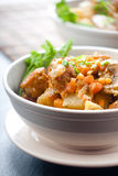 Stewed meat with vegetables Royalty Free Stock Photo