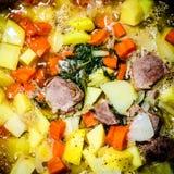 Stewed mięso z grulą i marchewką obrazy stock