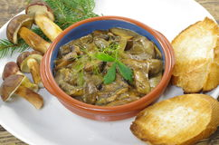 Stewed mushrooms with bread Royalty Free Stock Photos