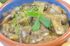 Stewed mushrooms with bread Stock Photography