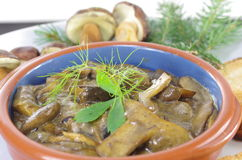 Stewed mushrooms with bread Stock Image
