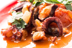 Stewed octopus in tomatoe sauce Stock Images