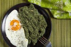 Stewed pokrzywy z jajkiem zdjęcia stock