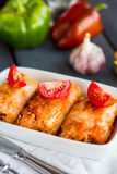 Stewed stuffed cabbage with meat and tomatoes, Russian cuisine Stock Image