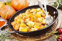 Stewed turkey with pumpkin and potatoes Stock Photography