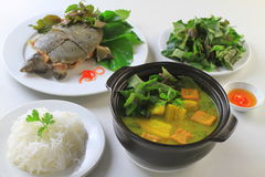 Stewed turtle softshells with herbs, banana soup and vermicelli Stock Photos