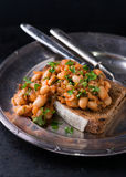 Stewed white beans in tomato sauce on toasted bread Royalty Free Stock Photos