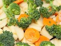 stewing grönsak för ny mix Royaltyfri Fotografi