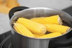 Stewpot con las mazorcas del agua y de maíz en estufa imágenes de archivo libres de regalías
