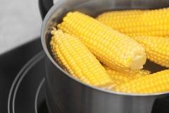 Stewpot con las mazorcas del agua y de maíz en estufa foto de archivo libre de regalías