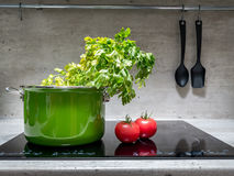 Stewpot with vegetables on induction cooker. Green enamel stewpot with parsley and two tomatoes on black induction cooker Royalty Free Stock Photography