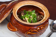 Stews. In a bowl on the table Stock Photography