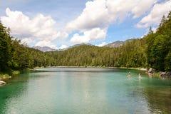 Stia su remante nel lago Eibsee nelle alpi bavaresi vicino a Garmisch Partenkirchen, Baviera Germania Fotografia Stock Libera da Diritti