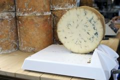 Stichelton cheese Royalty Free Stock Images