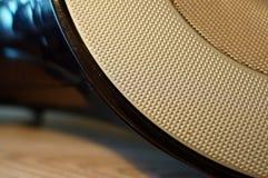 Stichhaltiger Lautsprecher Lizenzfreie Stockfotografie