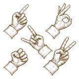 Stichvektorillustration von fünf Händen vektor abbildung