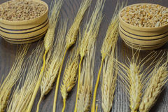 Stick of barley, wheat and buckwheat Royalty Free Stock Images