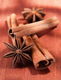 Stick of cinnamon with anise Stock Photography