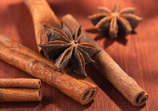 Stick of cinnamon with anise Royalty Free Stock Image