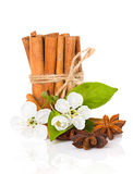 Stick cinnamon, anise star and apple flowers Stock Photos