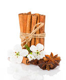 Stick cinnamon, anise star and apple flowers Royalty Free Stock Photography